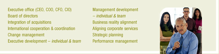 Executive office (CEO, COO, CFO, CIO), Board of directors, Integration of acquisitions, Internal cooperation and coordnation, Change management, Executive development - individual and team, Management development - individual and team, Business reality alignment, Aligning corporate services, Strategic planning, Performance management
